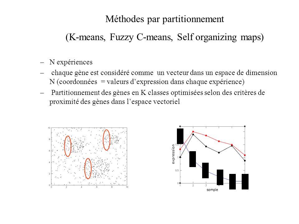 –N expériences – chaque gène est considéré comme un vecteur dans un espace de dimension N (coordonnées = valeurs dexpression dans chaque expérience) –