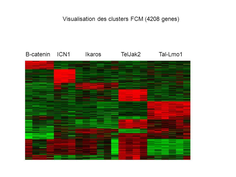 B-catenin ICN1 Ikaros TelJak2 Tal-Lmo1 Visualisation des clusters FCM (4208 genes)