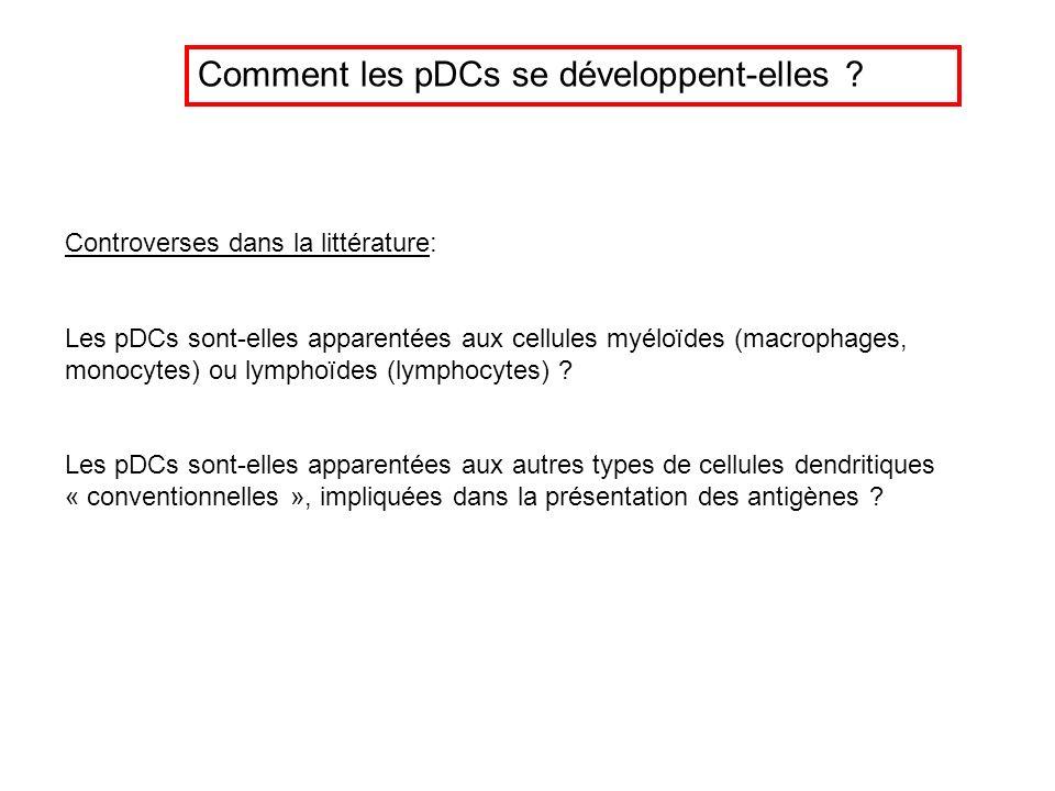 Comment les pDCs se développent-elles ? Controverses dans la littérature: Les pDCs sont-elles apparentées aux cellules myéloïdes (macrophages, monocyt