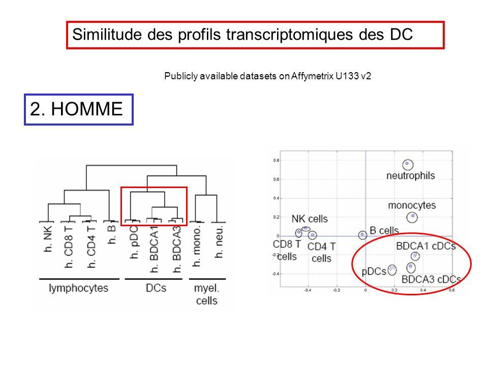 2. HOMME Publicly available datasets on Affymetrix U133 v2 Similitude des profils transcriptomiques des DC