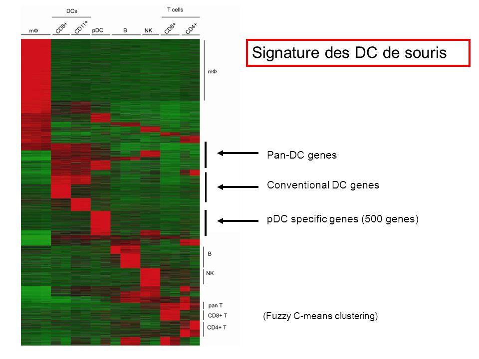 Pan-DC genes pDC specific genes (500 genes) Conventional DC genes Signature des DC de souris (Fuzzy C-means clustering)