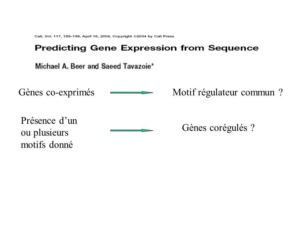 Gènes co-exprimésMotif régulateur commun ? Présence dun ou plusieurs motifs donné Gènes corégulés ?