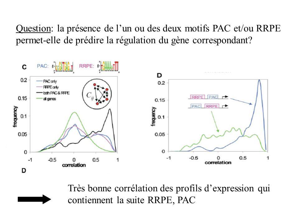 Question: la présence de lun ou des deux motifs PAC et/ou RRPE permet-elle de prédire la régulation du gène correspondant? Très bonne corrélation des