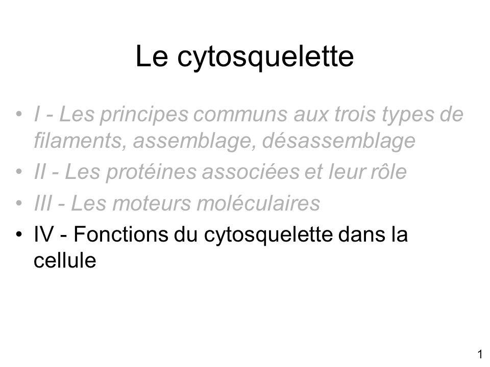 1 Le cytosquelette I - Les principes communs aux trois types de filaments, assemblage, désassemblage II - Les protéines associées et leur rôle III - L