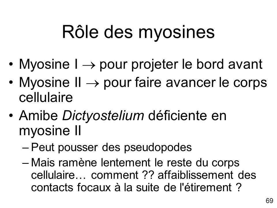 69 Rôle des myosines Myosine I pour projeter le bord avant Myosine II pour faire avancer le corps cellulaire Amibe Dictyostelium déficiente en myosine