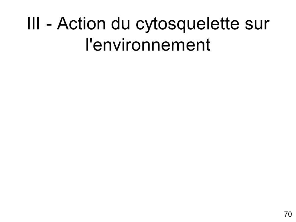 70 III - Action du cytosquelette sur l'environnement