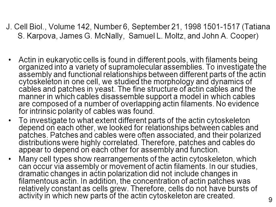 9 J. Cell Biol., Volume 142, Number 6, September 21, 1998 1501-1517 (Tatiana S. Karpova, James G. McNally, Samuel L. Moltz, and John A. Cooper) Actin