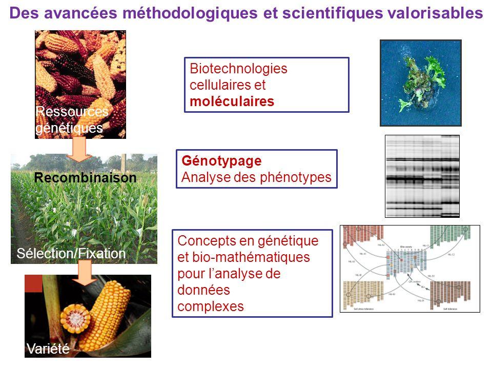 Des avancées méthodologiques et scientifiques valorisables Ressources génétiques Sélection/Fixation Variété Recombinaison Biotechnologies cellulaires