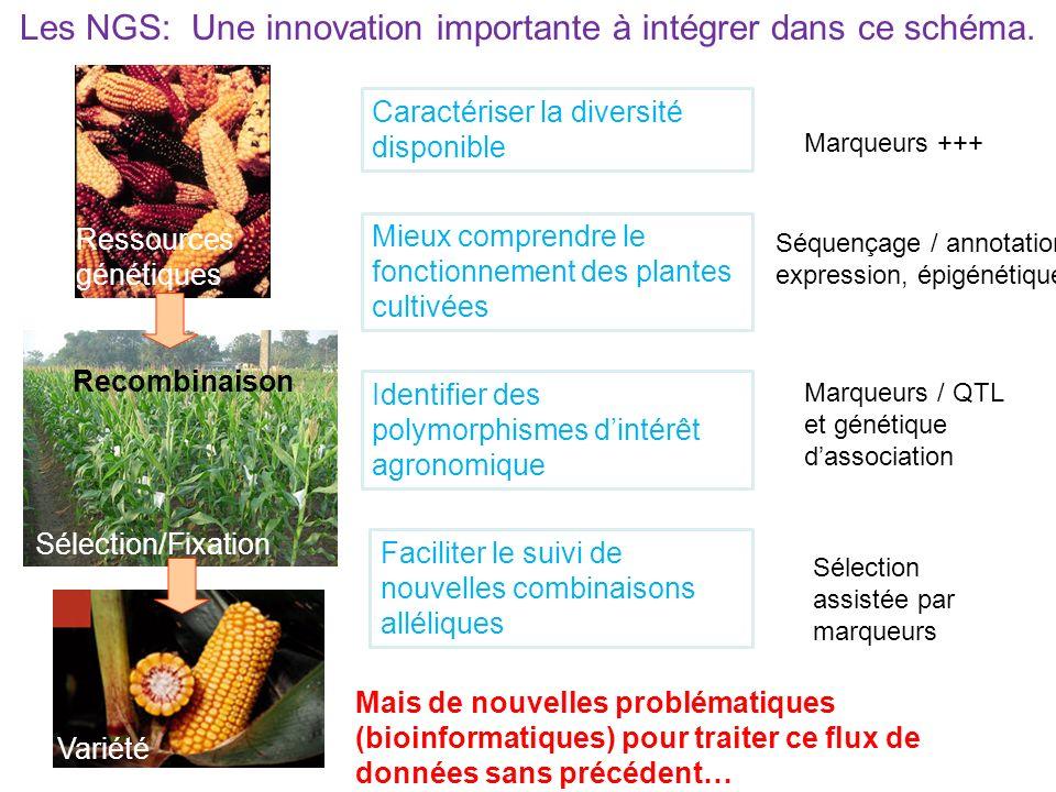 Les NGS: Une innovation importante à intégrer dans ce schéma. Ressources génétiques Sélection/Fixation Variété Recombinaison Caractériser la diversité