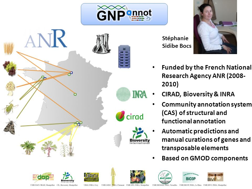 Funded by the French National Research Agency ANR (2008- 2010) CIRAD, Bioversity & INRA Community annotation system (CAS) of structural and functional annotation Automatic predictions and manual curations of genes and transposable elements Based on GMOD components Stéphanie Sidibe Bocs