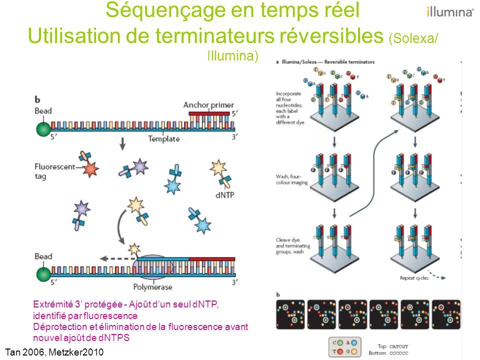 Immobilisation dun brin unique sans amplification: Hélicos Biosciences Pacific Biosciences Un nouveau mode de préparation des échantillons et leur dépôt sur support miniaturisé