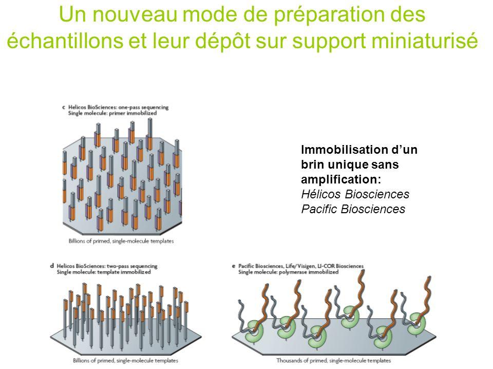 Immobilisation dun brin unique sans amplification: Hélicos Biosciences Pacific Biosciences Un nouveau mode de préparation des échantillons et leur dép