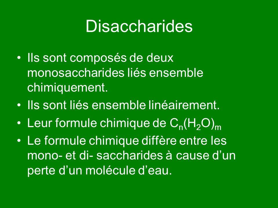 Disaccharides Ils sont composés de deux monosaccharides liés ensemble chimiquement. Ils sont liés ensemble linéairement. Leur formule chimique de C n