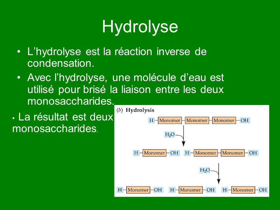 Hydrolyse Lhydrolyse est la réaction inverse de condensation. Avec lhydrolyse, une molécule deau est utilisé pour brisé la liaison entre les deux mono