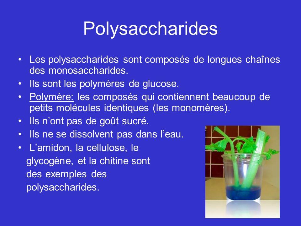Polysaccharides Les polysaccharides sont composés de longues chaînes des monosaccharides. Ils sont les polymères de glucose. Polymère: les composés qu