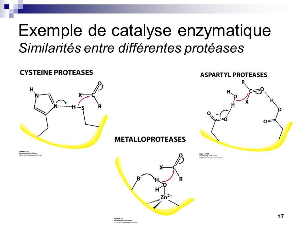 CHMI 2227 - E.R. Gauthier, Ph.D.17 Exemple de catalyse enzymatique Similarités entre différentes protéases