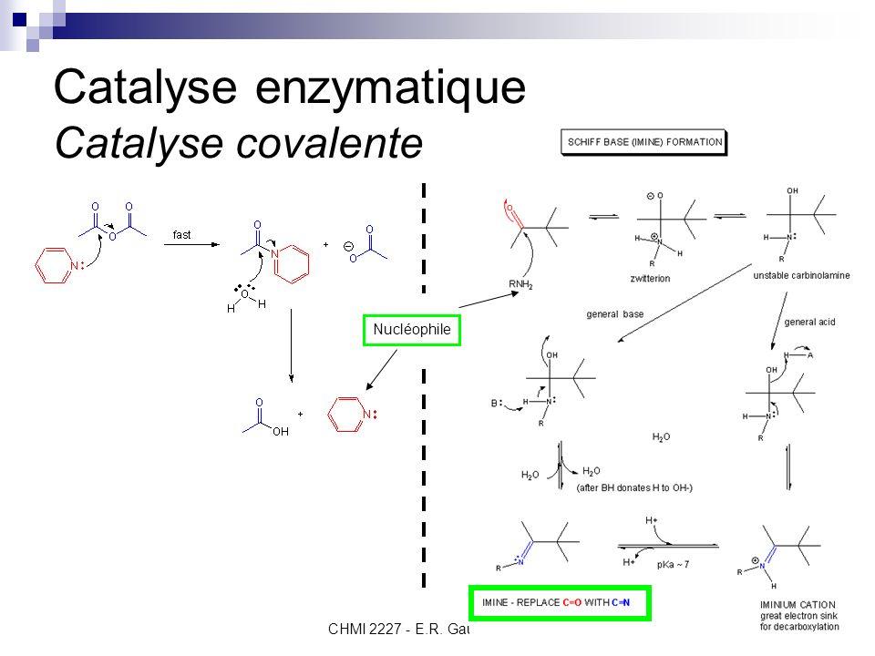 CHMI 2227 - E.R. Gauthier, Ph.D.7 Catalyse enzymatique Rappel– nucléophiles et électrophiles