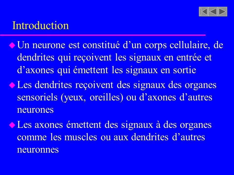 Introduction u Un neurone est constitué dun corps cellulaire, de dendrites qui reçoivent les signaux en entrée et daxones qui émettent les signaux en