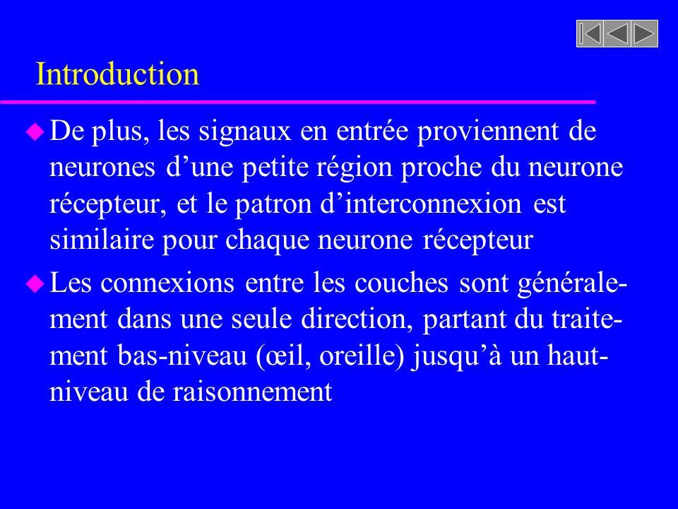 Introduction u De plus, les signaux en entrée proviennent de neurones dune petite région proche du neurone récepteur, et le patron dinterconnexion est