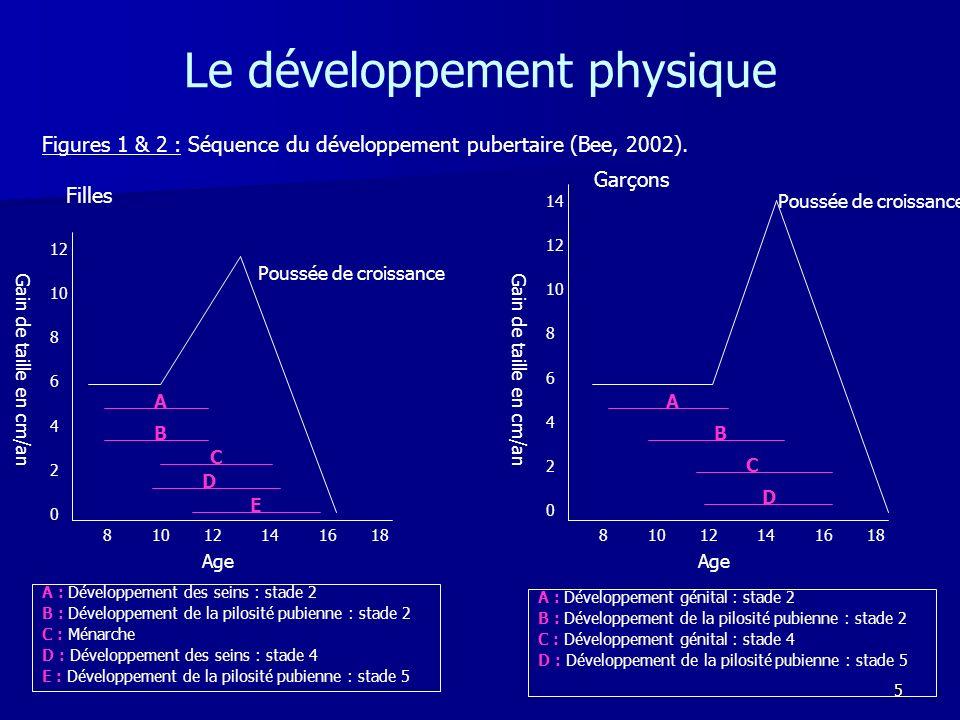 6 Le développement physique Hypothèse : modèle interne (Lerner, 1985, 1987 ; Petersen, 1987).