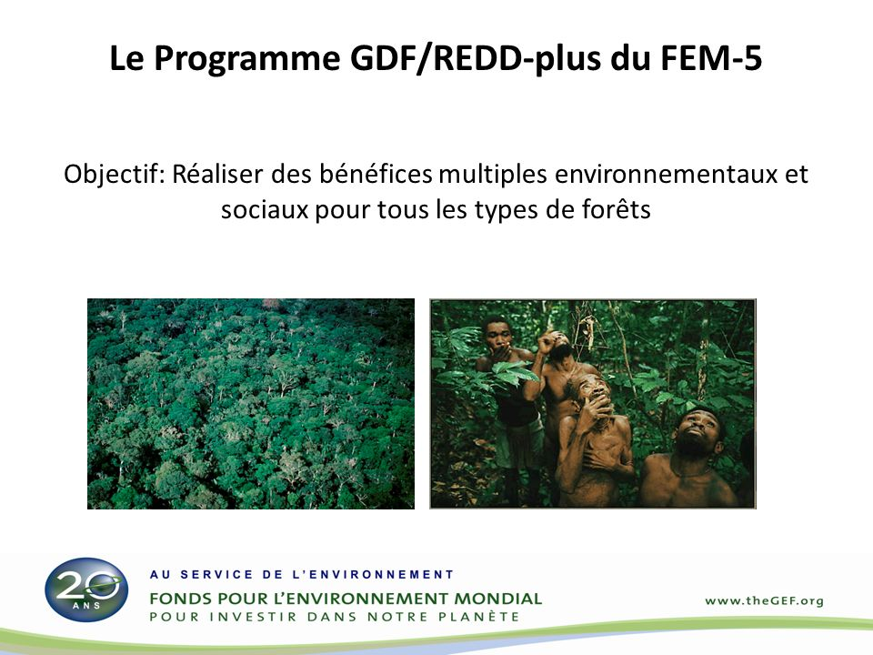 Les forêts – pourquoi sont-elles importants pour le FEM.