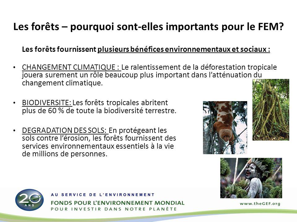 Les forêts – pourquoi sont-elles importants pour le FEM? Les forêts fournissent plusieurs bénéfices environnementaux et sociaux : CHANGEMENT CLIMATIQU