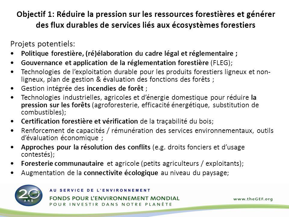 Objectif 2: Renforcer le cadre incitatif pour réduire les émissions des gaz à effet de serre (GES) provenant de la déforestation et de la dégradation des forêts (REDD+) Projets potentiels Competition for land use and land-use changes (e.g.