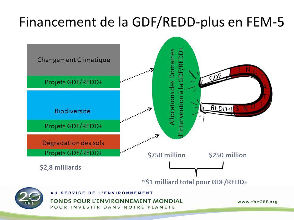 Le mécanisme d incitation GDF/REDD-plus de FEM-5 Les investissements d au moins 2 domaines d intervention du FEM (DB, ou DT, ou CC) maximiser les bénéfices multiples Un ratio incitatif de 3:1 (par exemple 6 millions de dollars de la biodiversité et du changement climatique 2 millions de dollars de GDF/REDD-plus) Minimum de 2 millions de dollars de la contribution STAR pour accéder à un financement incitatif SFM/REDD+ par projet Plafond de 30 millions de dollars de la contribution STAR pour accéder à un financement incitatif SFM/REDD+ par projet Tous les pays éligibles au FEM peuvent demander un financement incitatif