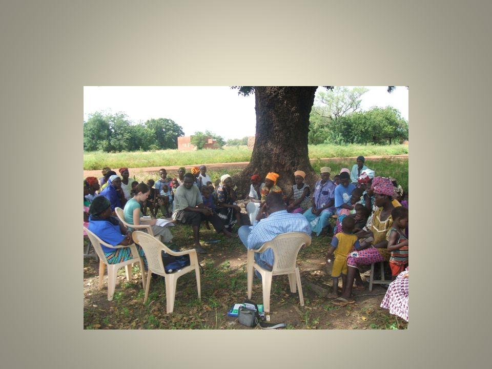 Introduction Recherche exploratoire qui se veut un diagnostique de la portée du DD en tant que paradigme du développement et de modalité de progrès dans deux villages du Burkina Faso (Koumbili et Siéna).