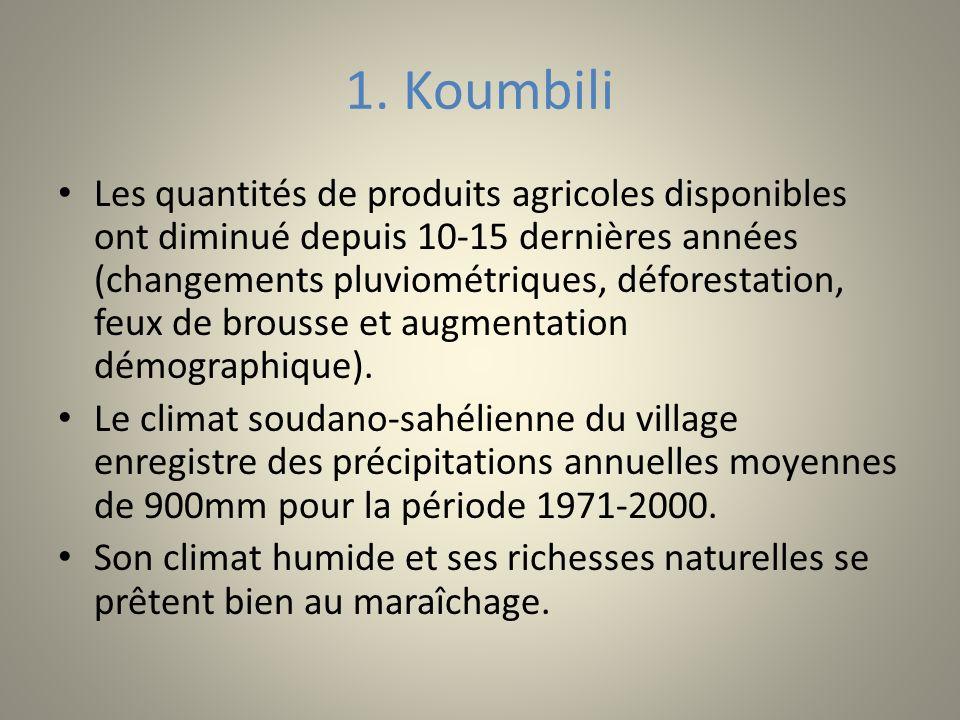 1. Koumbili Les quantités de produits agricoles disponibles ont diminué depuis 10-15 dernières années (changements pluviométriques, déforestation, feu
