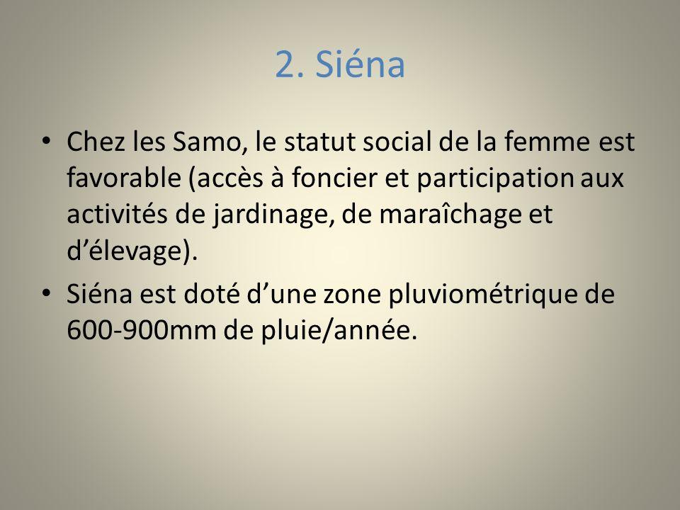 2. Siéna Chez les Samo, le statut social de la femme est favorable (accès à foncier et participation aux activités de jardinage, de maraîchage et déle