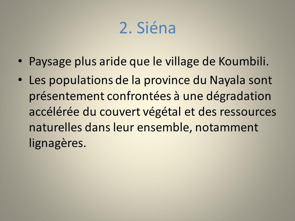 2. Siéna Paysage plus aride que le village de Koumbili.