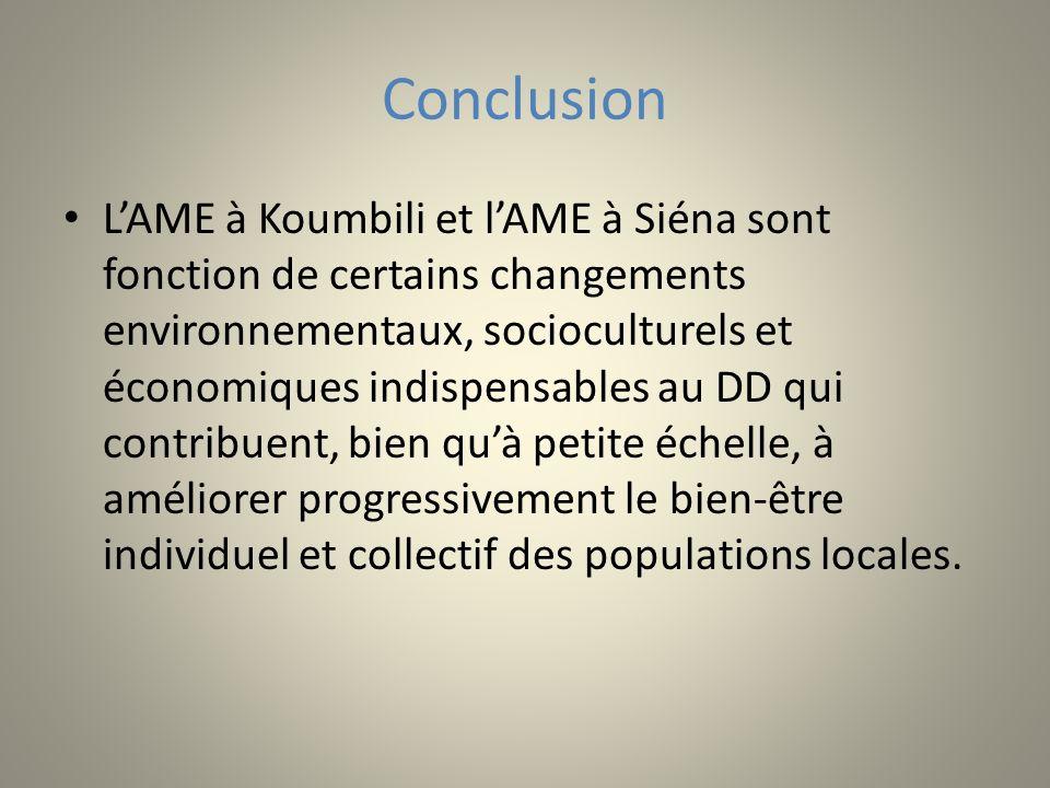 Conclusion LAME à Koumbili et lAME à Siéna sont fonction de certains changements environnementaux, socioculturels et économiques indispensables au DD qui contribuent, bien quà petite échelle, à améliorer progressivement le bien-être individuel et collectif des populations locales.