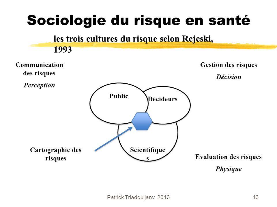 Patrick Triadou janv 201343 Sociologie du risque en santé les trois cultures du risque selon Rejeski, 1993 Scientifique s Décideurs Public Cartographi