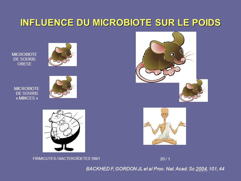 INFLUENCE DU MICROBIOTE SUR LE POIDS MICROBIOTE DE SOURIS OBESE MICROBIOTE DE SOURIS « MINCES » FIRMICUTES / BACTEROÏDETES 100/1 20 / 1 BACKHED F, GOR