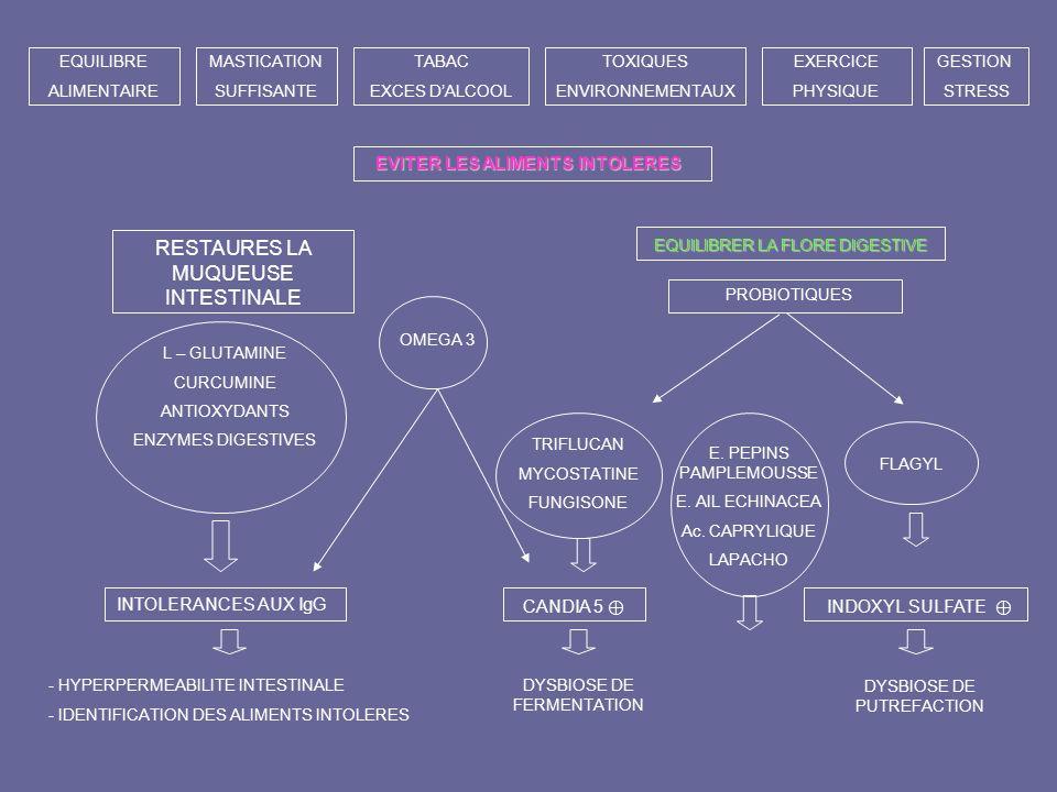 INTOLERANCES AUX IgG - HYPERPERMEABILITE INTESTINALE - IDENTIFICATION DES ALIMENTS INTOLERES CANDIA 5 DYSBIOSE DE FERMENTATION INDOXYL SULFATE DYSBIOS