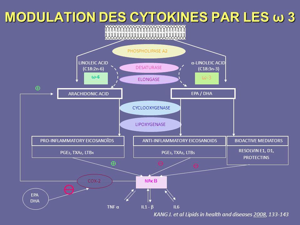 PHOSPHOLIPASE A2 DESATURASE ELONGASE CYCLOOXYGENASE LIPOXYGENASE LINOLEIC ACID (C18:2n-6) ω -6 ARACHIDONIC ACID PRO-INFLAMMATORY EICOSANOÏDS PGE 2, TX