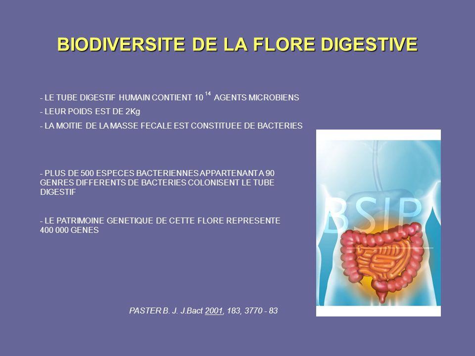 BIODIVERSITE DE LA FLORE DIGESTIVE - PLUS DE 500 ESPECES BACTERIENNES APPARTENANT A 90 GENRES DIFFERENTS DE BACTERIES COLONISENT LE TUBE DIGESTIF - LE