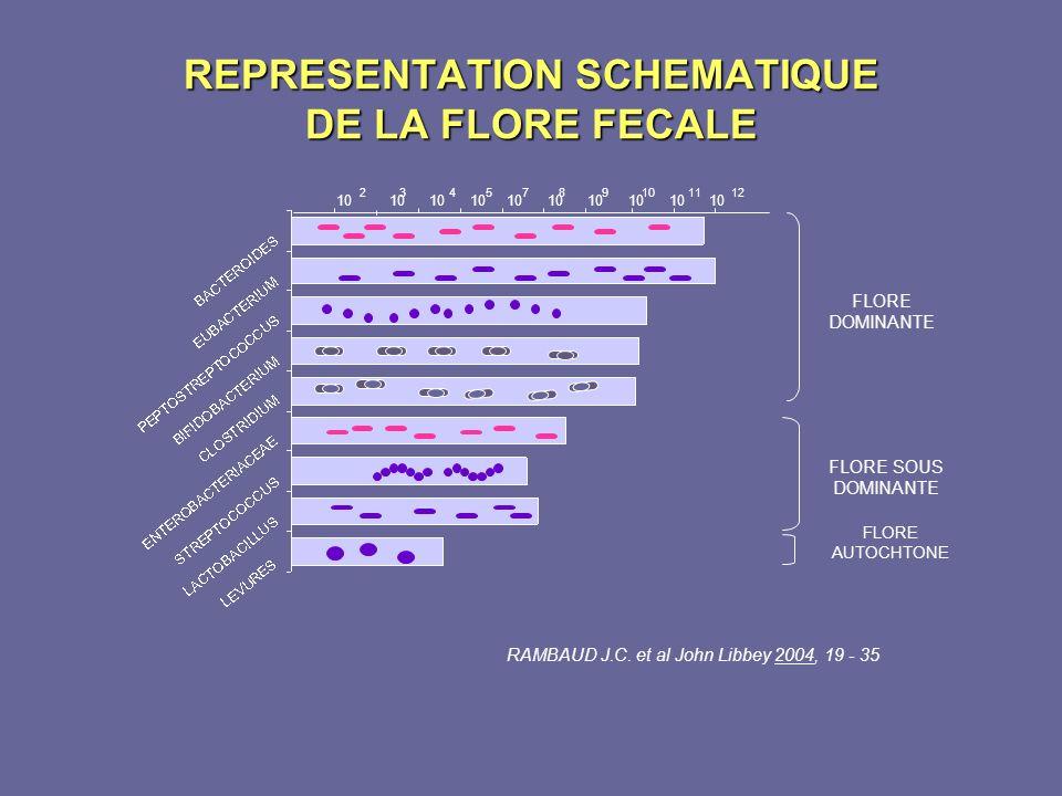 REPRESENTATION SCHEMATIQUE DE LA FLORE FECALE 10 10 10 10 10 10 10 10 10 10 2 3 4 5 7 8 9 10 11 12 RAMBAUD J.C. et al John Libbey 2004, 19 - 35 FLORE