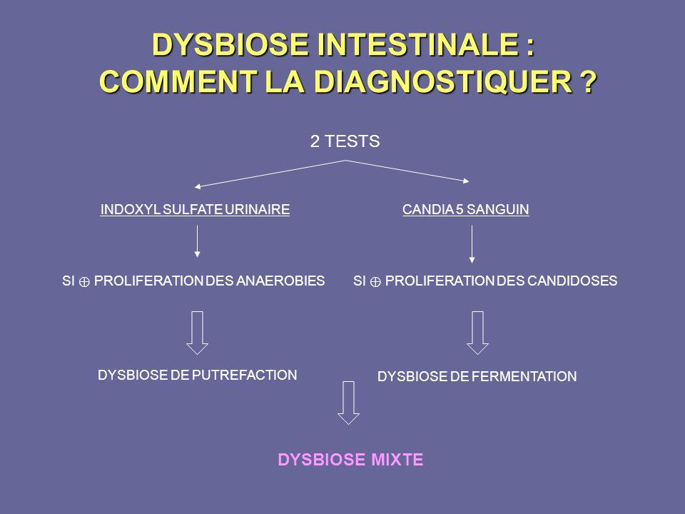 DYSBIOSE INTESTINALE : COMMENT LA DIAGNOSTIQUER ? DYSBIOSE MIXTE 2 TESTS INDOXYL SULFATE URINAIRECANDIA 5 SANGUIN SI PROLIFERATION DES ANAEROBIES DYSB