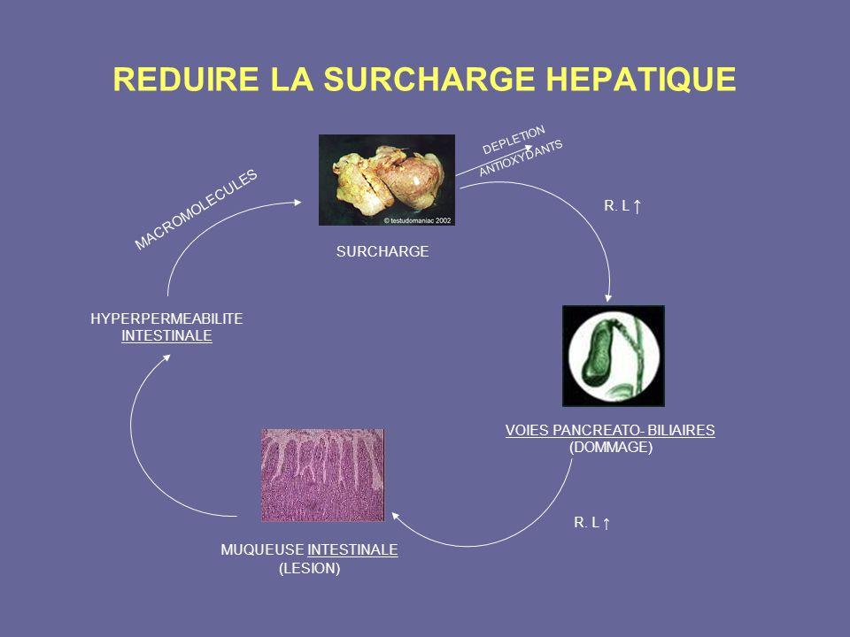 REDUIRE LA SURCHARGE HEPATIQUE HYPERPERMEABILITE INTESTINALE MACROMOLECULES SURCHARGE DEPLETION ANTIOXYDANTS R. L VOIES PANCREATO- BILIAIRES (DOMMAGE)