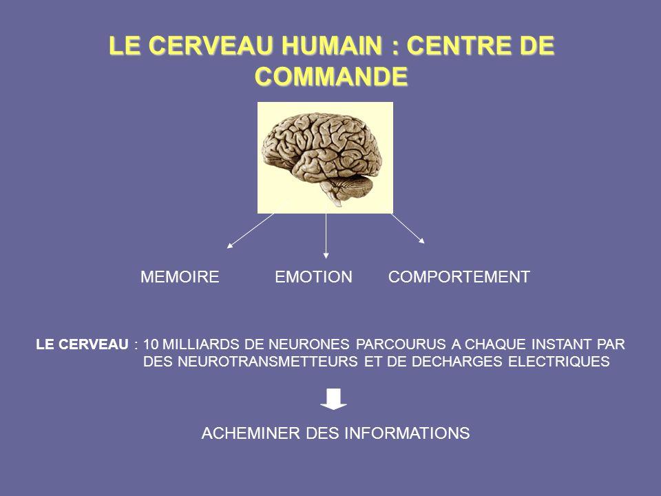 LE CERVEAU HUMAIN : CENTRE DE COMMANDE MEMOIRE EMOTION COMPORTEMENT LE CERVEAU : 10 MILLIARDS DE NEURONES PARCOURUS A CHAQUE INSTANT PAR DES NEUROTRAN