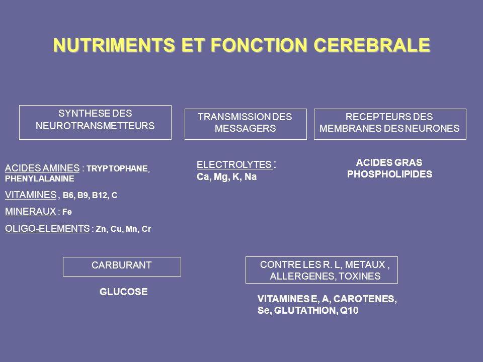 NUTRIMENTS ET FONCTION CEREBRALE SYNTHESE DES NEUROTRANSMETTEURS ACIDES AMINES : TRYPTOPHANE, PHENYLALANINE VITAMINES, B6, B9, B12, C MINERAUX : Fe OL