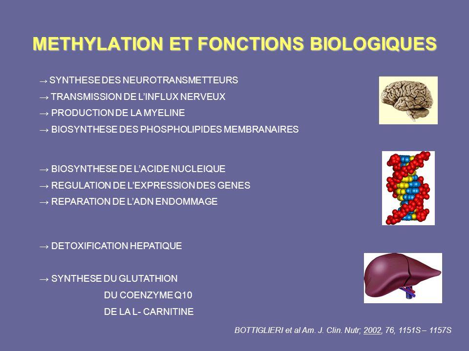 METHYLATION ET FONCTIONS BIOLOGIQUES SYNTHESE DES NEUROTRANSMETTEURS TRANSMISSION DE LINFLUX NERVEUX PRODUCTION DE LA MYELINE BIOSYNTHESE DES PHOSPHOL