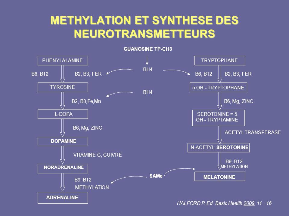 METHYLATION ET SYNTHESE DES NEUROTRANSMETTEURS ADRENALINE PHENYLALANINE B6, B12B2, B3, FER TYROSINE B2, B3,Fe,Mn L-DOPA B6, Mg, ZINC DOPAMINE VITAMINE