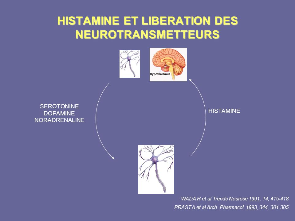 HISTAMINE ET LIBERATION DES NEUROTRANSMETTEURS WADA H et al Trends Neurose 1991, 14, 415-418 PRAST A et al Arch. Pharmacol. 1993, 344, 301-305 HISTAMI