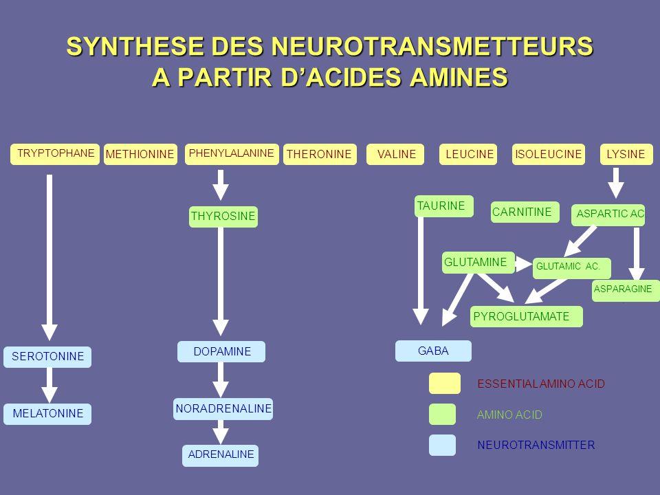 SYNTHESE DES NEUROTRANSMETTEURS A PARTIR DACIDES AMINES TRYPTOPHANE METHIONINELYSINEISOLEUCINELEUCINEVALINETHERONINE PHENYLALANINE SEROTONINE MELATONI