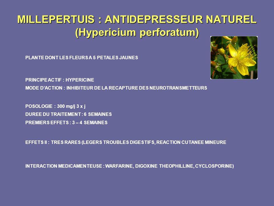 MILLEPERTUIS : ANTIDEPRESSEUR NATUREL (Hypericium perforatum) PLANTE DONT LES FLEURS A 5 PETALES JAUNES PRINCIPE ACTIF : HYPERICINE MODE DACTION : INH