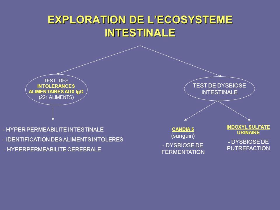 EXPLORATION DE LECOSYSTEME INTESTINALE TEST DES INTOLERANCES ALIMENTAIRES AUX IgG (221 ALIMENTS) - HYPER PERMEABILITE INTESTINALE - IDENTIFICATION DES