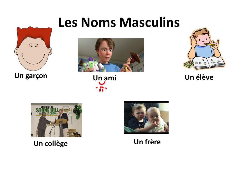 Les Noms Masculins Un garçon Un ami Un élève Un collège Un frère